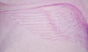 angel-wing-print